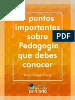 Guia-Pedagogia-practica