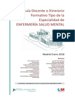 GUI A DOCENTE TIPO Enfermeri a Salud Mental 2018 (2)