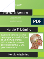 Nervio trigémino.pptx