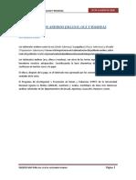 TEMA Nº 3 Cultivo de Olluco, Oca y Mashua.pdf