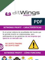 Bitwings Profit - Español - 16_03_2020.pptx