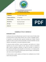 BARRERAS VIVAS Y MUERTAS