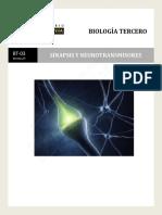 352-BT-03-Sinapsis y neurotransmisores-2019-7%.pdf