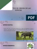 CONCEPTOS DE ORIGEN DE LAS ESPECIES.pdf