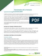 Informe-Influenza-26