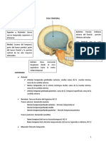 5. Fosa Temporal, Cigomatica y Pterigomaxilar