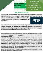 RESPIRACION CELULAR semana 3 octavo texto.pdf