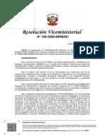 RVM_N__100-2020-MINEDU