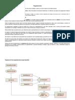 Organizaciones SeH (3)