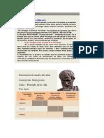 Informacion Aristoteles (Teorias y fundamentos)