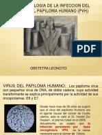fisiopatologiadelainfecciondelvirusdelpapiloma-130605094839-phpapp01