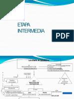 etapa intermedia expo.pptx