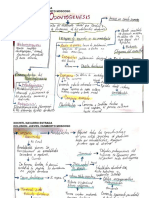 CUADRO ODONTOGENESIS.pdf