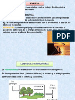 UNIDAD IV, a, 2017.pdf