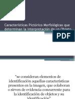 Características Pictórico Morfológicas