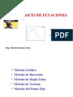 RAICES DE ECUACIONES2018