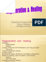 01 Regeneration and Healing