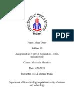Dna Replication Transcription Mirza OMER_ BBT193033