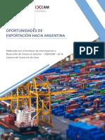 oportunidades de exportación hacia argentina