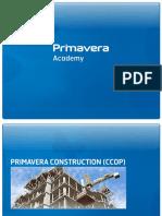 P014 - CCOP (2010-v0.2-PT)