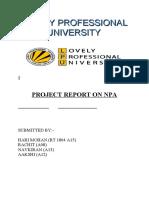 project-report-on-NPA.doc