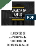 PROCESO DE AMPARO DE SALUD - MÓDULO II