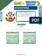 El-Ecosistema-para-Tercer-Grado-de-Primaria