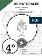 1 C.NAT_4º_2T_Esqueleto (1)
