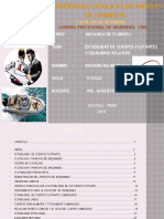 MFI Estabilidadcuerposrichardmajin.pptx