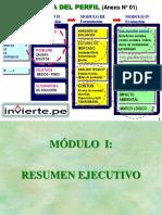 FormProy_IDENTIFICACION-FORMULACION
