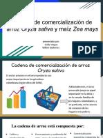 cadena de comercializacion maiz y arroz.pptx