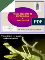 Generalidades de los insectos