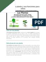 las plantas para niños