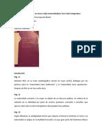 Apuntes libro-Discursos teóricos en torno a la(s) maternidad(es).docx