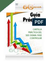 6 SIGMA 06 CONTROLAR.pdf