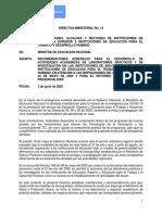 2020 06 03 Directiva No. 13 Apertura Progresiva de IES e IETDH
