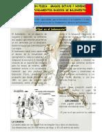 guias 1 edufisica grado 8 y 9.pdf