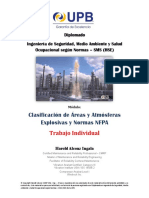 Microsoft Word - Trabajo Individual.docx.pdf