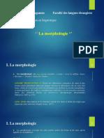 Cours 6. La morphologie
