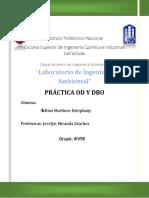 PRACTICA OD Y DBO.pdf