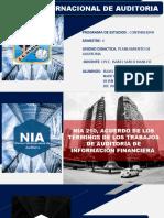 NIA_PLANEAMIENTO_DE_AUDITORIA[1] 1