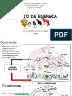 Clase 2_Flujo de  energía