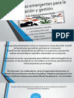 CastroRodriguez_Antonio_M23S2A5_Organizacion_Divisiondeltrabajo