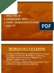 Human Occupations