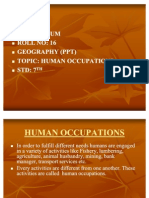 Human Occupations