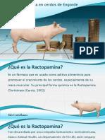 ractopamina.pdf