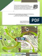 Mapa Mental Estudios doctorales VERSIÓN DEFINITIVA
