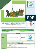 agrodiviso cultivos hidropónicos final