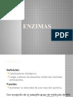 2 ENZIMAS