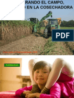 C-FIELD AND HARVESTER PREPARATION ESP.ppt